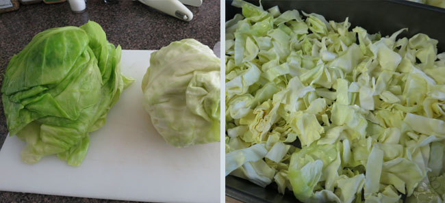 Tales of Graces f: Stuffed Cabbage