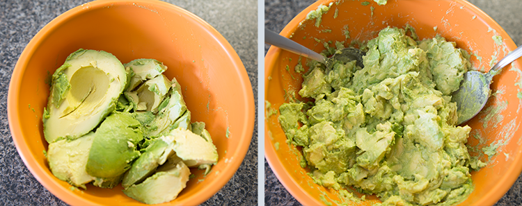 Don't Starve: Guacamole