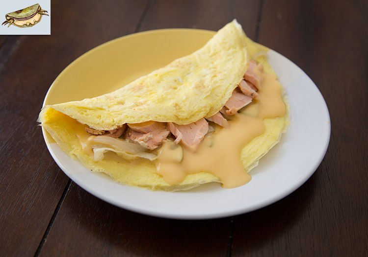 Fallout New Vegas: Wasteland Omelette