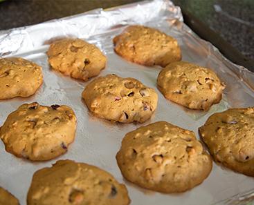 Don't Starve: Pumpkin Cookie
