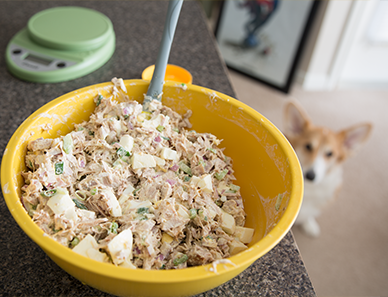Scribblenauts: Tuna Salad